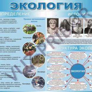 Определение, история, структура экологии