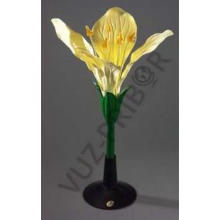 Цветок капусты