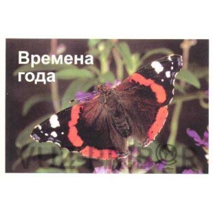 """Комплект слайдов """"Времена года"""""""