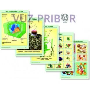 """Комплект таблиц """"Окружающий мир 1-4 класс. Растения. Животные"""""""