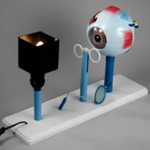 Прибор для демонстрации действия глаза (модель зрения)